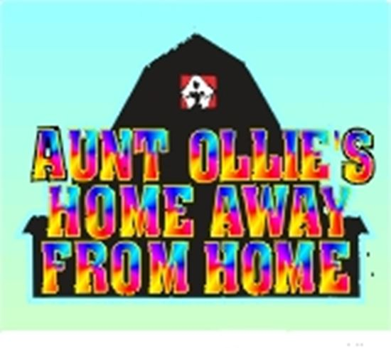 Picture of Aunt Ollie's Home Away.... cover art.