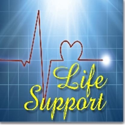 Picture of Life Support cover art.