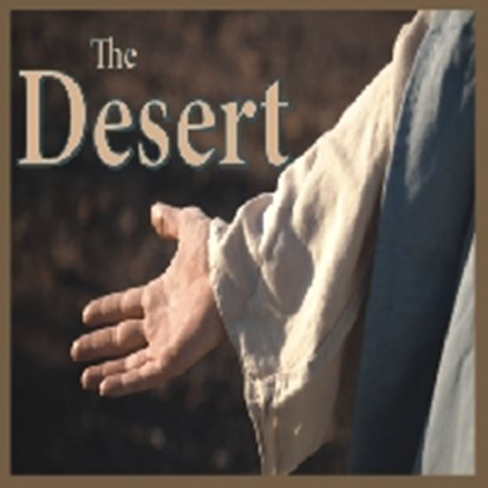 Picture of Desert, The cover art.