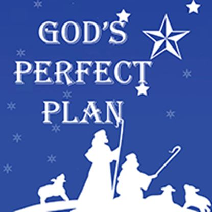 Picture of God's Perfect Plan cover art.