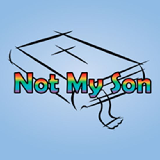 Picture of Not My Son cover art.